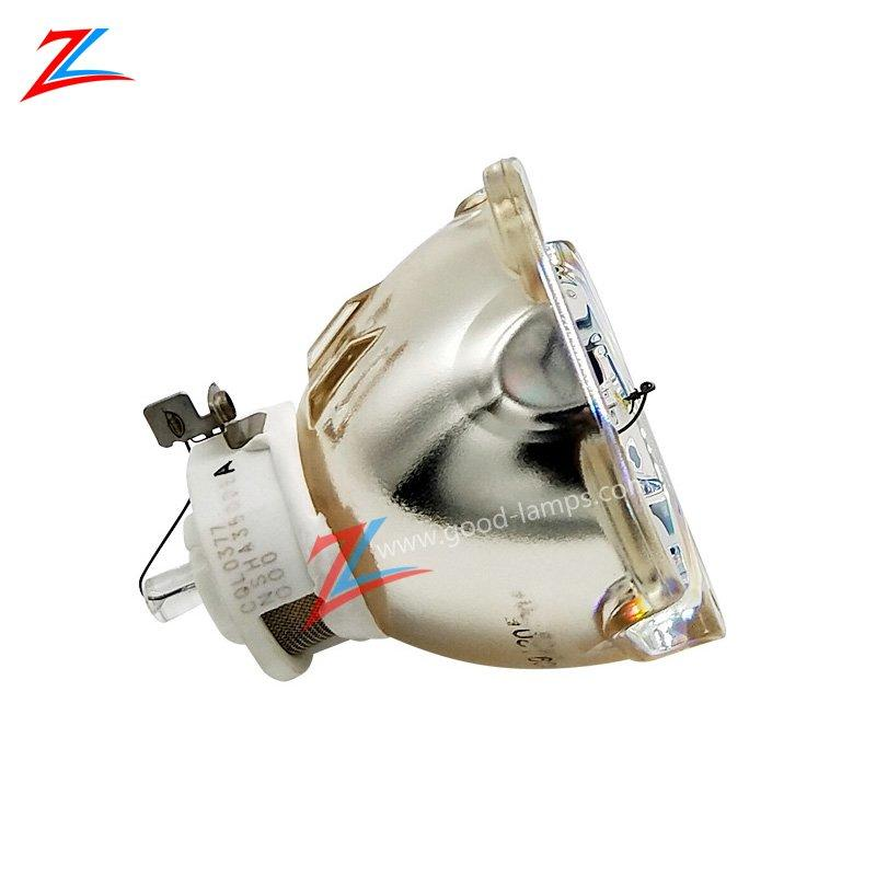 Projector lamp NP-9LP01