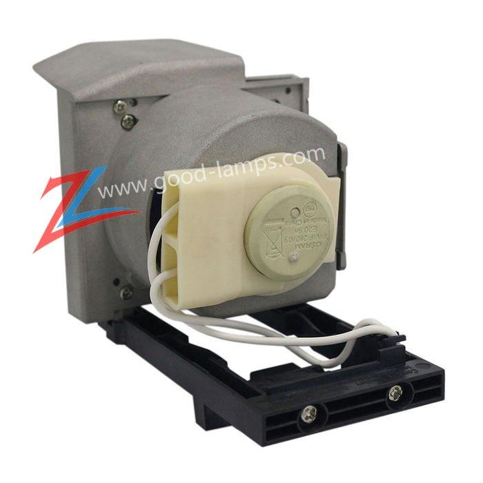 Projector lamp 1020991