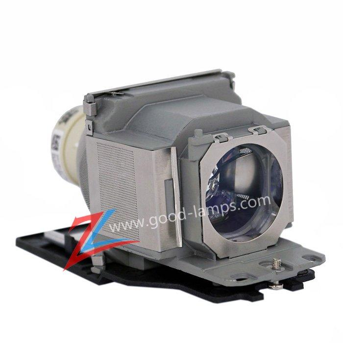 Projector Lamp LMP-D213