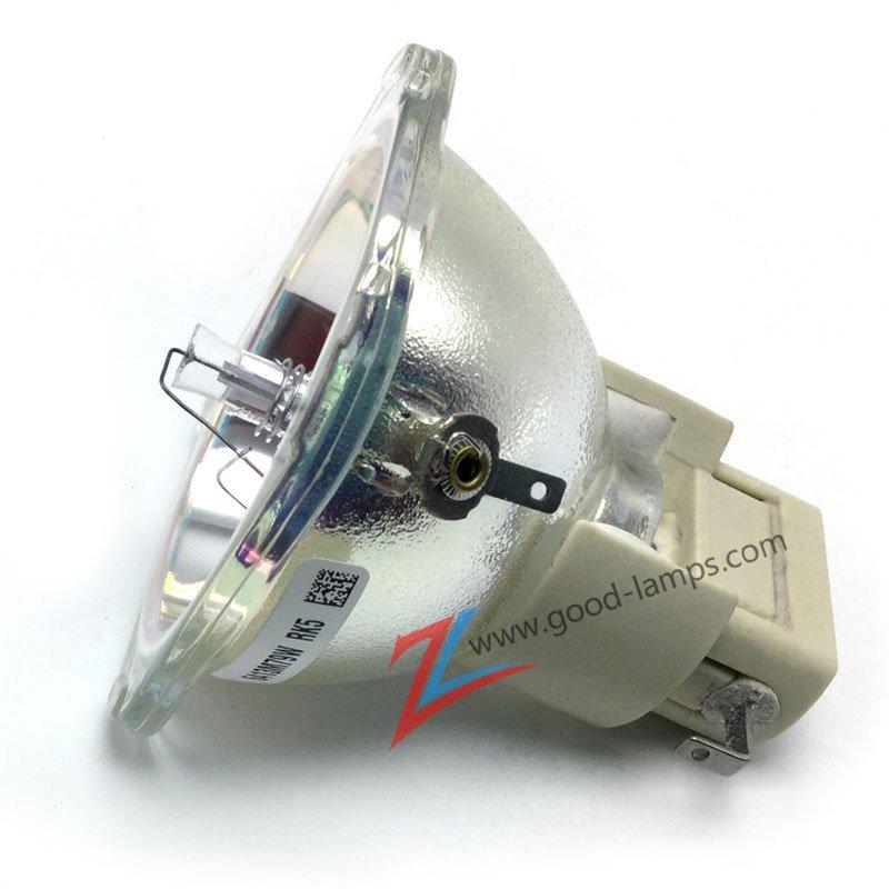 Projector lamp EC.J5400.001