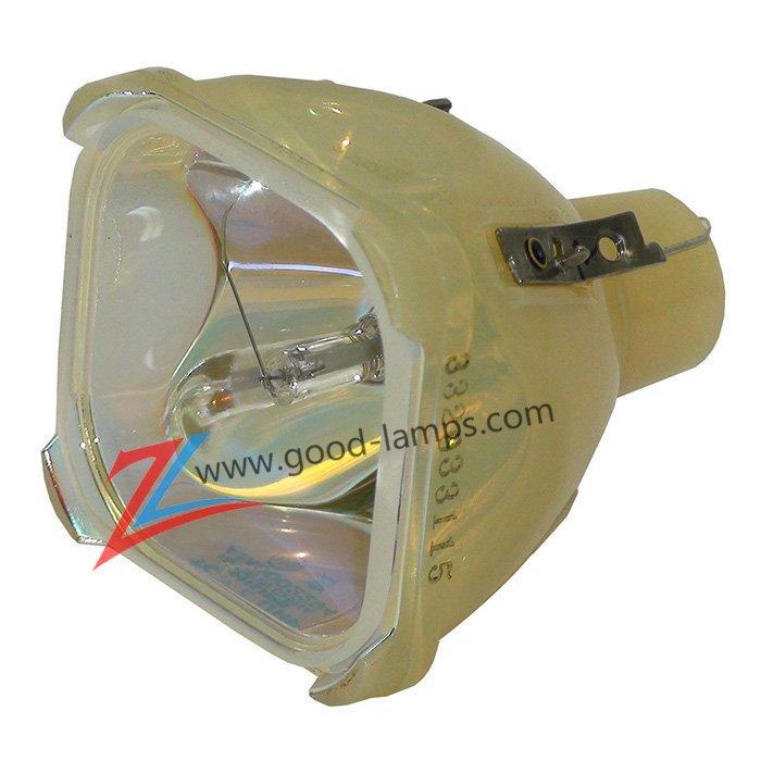 Projector Lamp LCA3118