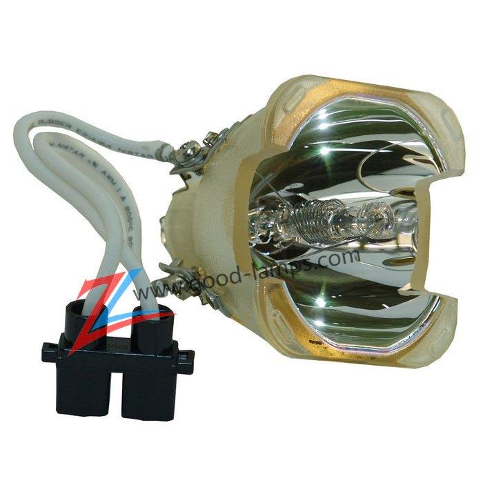 Projector lamp BL-FP250A