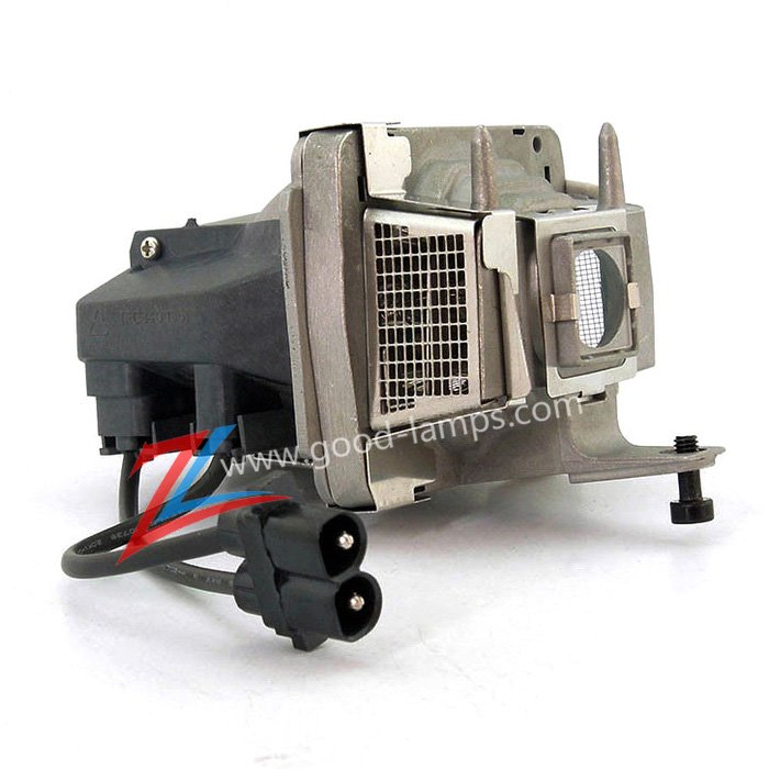 Replacement Lamp with Housing for PANASONIC PT-VX500U with Ushio ...