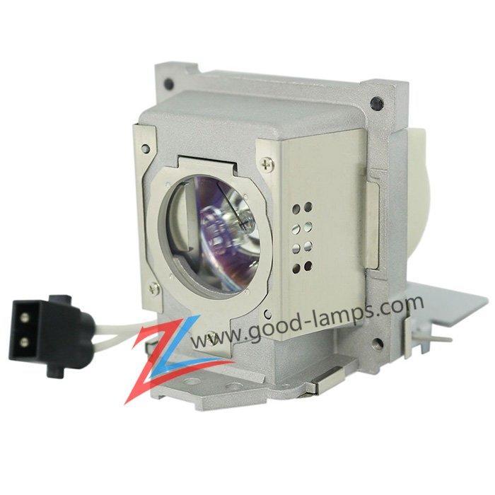 Projector lamp 5J.J8C05.002